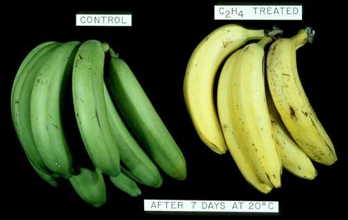 Как применять глицерин